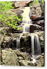 Falls Acrylic Print by Marty Koch