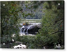 Falls Through Trees Acrylic Print by Static Studios