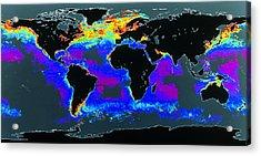 False-col Satellite Image Of World's Oceans Acrylic Print by Dr Gene Feldman, Nasa Gsfc