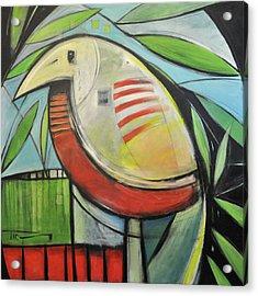 Fancy Bird Acrylic Print by Tim Nyberg