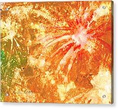 Fantastic Fireworks Acrylic Print by Rosie Brown