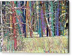 Fantastic Forest Acrylic Print