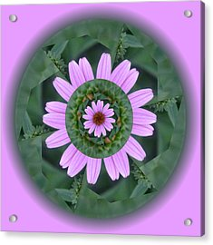 Fantasy Flower Acrylic Print by Linda Pope