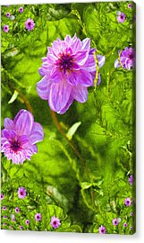 Fantasy Pink Dahlia Acrylic Print by Design Windmill