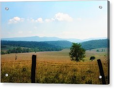 Far Afield  Acrylic Print by Ross Powell