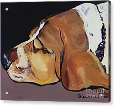 Farley Acrylic Print by Pat Saunders-White