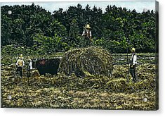 Farmers Haying Acrylic Print by Robert Goudreau