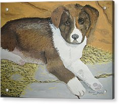 Acrylic Print featuring the painting Fat Puppy by Norm Starks