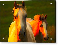 Father And Son Acrylic Print by Randall Branham
