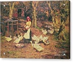 Feeding The Ducks Acrylic Print by Joseph Harold Swanwick