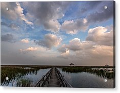 Feel Good Acrylic Print by Arthit Somsakul