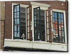 Feet Out The Window Acrylic Print by Lee Versluis
