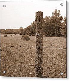 Fence And Field Acrylic Print by Sheila Harnett