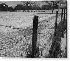 Fence And Snow Acrylic Print