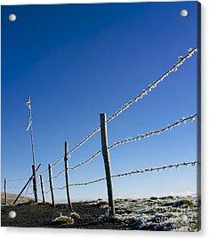Fence Covered In Hoarfrost In Winter Acrylic Print by Bernard Jaubert