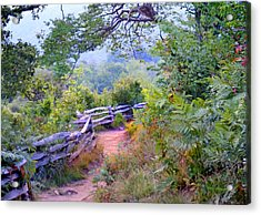 Fence To The Blueberries Filtered Acrylic Print