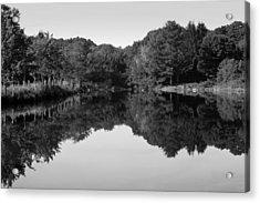 Fenns Pond Acrylic Print by Karol Livote