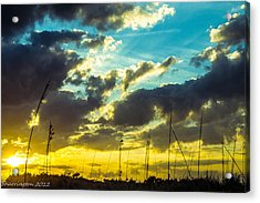 Acrylic Print featuring the photograph Fernandina Beach by Shannon Harrington