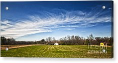 Field And Sky Acrylic Print