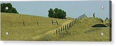 Field Fence Acrylic Print