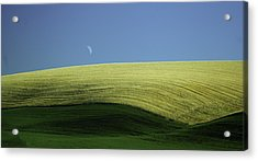 Fields And Quarter Moon Acrylic Print by Dale Stillman