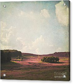Fields Of Heather Acrylic Print by Lyn Randle