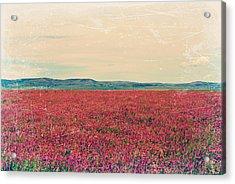 Fields Of Heaven Acrylic Print