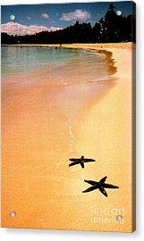 Fiji Beach With Starfish Acrylic Print by Jerome Stumphauzer