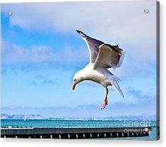 Final Approach - San Francisco Acrylic Print