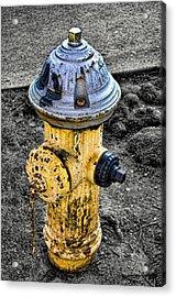 Fire Hydrant Acrylic Print by Bennie Reynolds