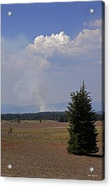 Fire In The Cascades Acrylic Print by Mick Anderson