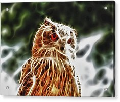 Fire Owl Acrylic Print by Tilly Williams