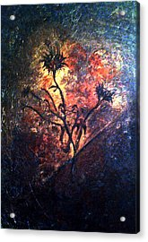 Fire Weeds Acrylic Print