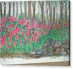 Fireweed By Stonewall Acrylic Print by Debbie Wassmann