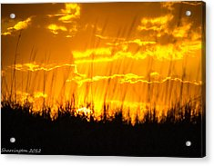 Acrylic Print featuring the photograph Firey Sunset by Shannon Harrington