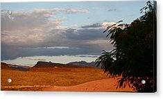 First Desert Light Acrylic Print