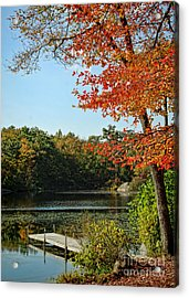 First Glimpse Of Fall Acrylic Print by Alexandra Jordankova