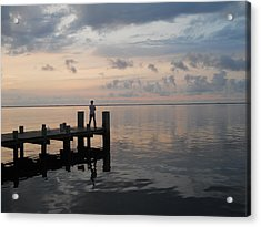 Acrylic Print featuring the photograph First Light by Clara Sue Beym