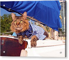 First Mate Acrylic Print