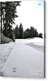 First Snow 10 Acrylic Print by Tanya  Searcy