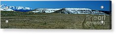 First Snow Acrylic Print by Patrick  Short