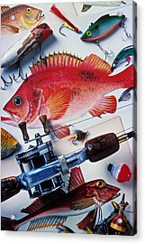 Fish Bookplates And Tackle Acrylic Print