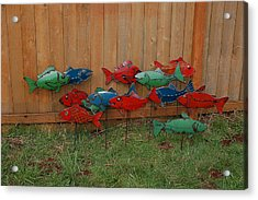 Fish From Cars Acrylic Print by Ben Dye