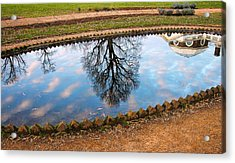Fish Pond II Acrylic Print by Steven Ainsworth