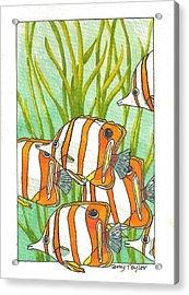 Fish School Acrylic Print