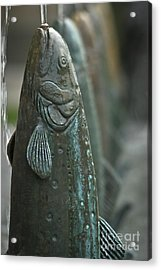 Fish Up Acrylic Print by David Taylor