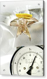 Fish With Lemon Slice On Weight Scale Acrylic Print by Sandra Cunningham