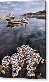 Fishing - 7 Acrylic Print