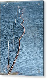 Acrylic Print featuring the photograph Fishing Nets by Rogerio Mariani