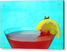 Fishing On A Piece Of Lemon Acrylic Print by Paul Ge